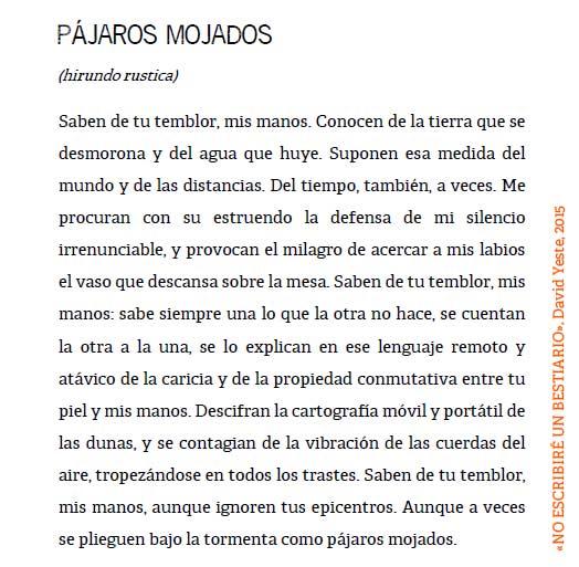 pajaros_mojados