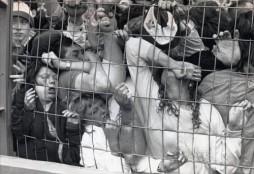 Image-A-Hillsborough-Crowd-Crush-500x344
