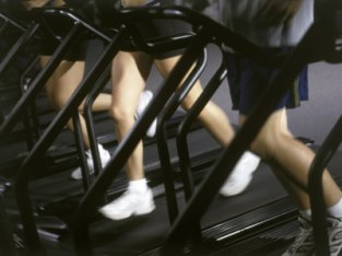 low-section-view-of-people-running-on-treadmills-in-a-gym