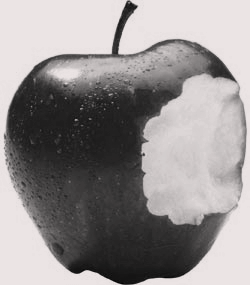 apple_bite_b_w-2