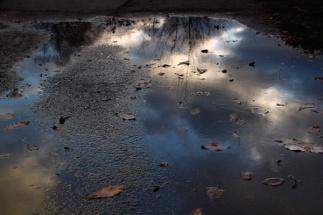 McEnaney-puddle-sunset.jpg