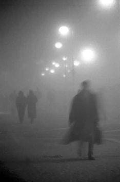 b087c23a0a7fdcaacb612dddfe900074--fog-photography-the-fog