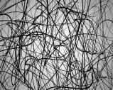 depositphotos_76386609-stock-illustration-random-lines-abstract-lines-pattern